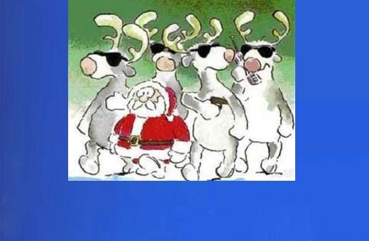 Reindeer Follies