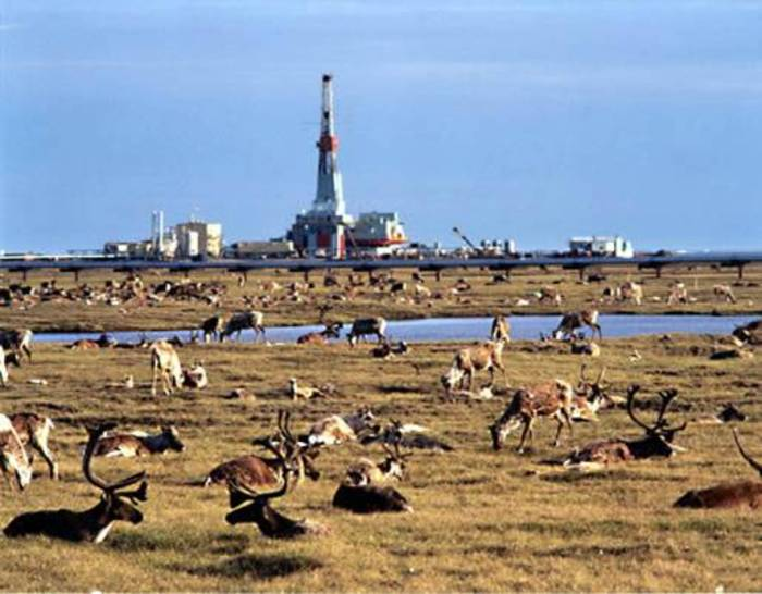 ANWR: It's Been '10 Years,' We Could Have Been Reaping Rewards Now