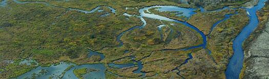 The EPA Is Annexing Alaska