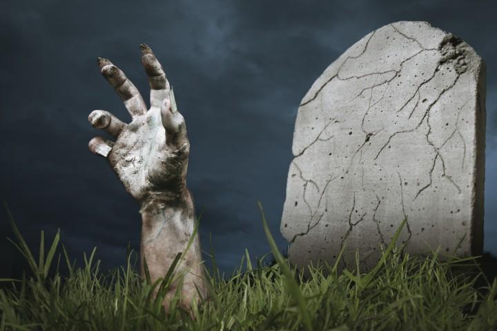 This Week In Zombies