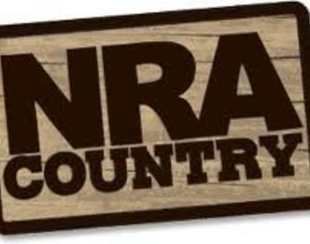 The NRA's Media Strategy, Is It Working?