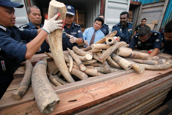 Ivory: Another Arbitrary Example of Obama Banning Things