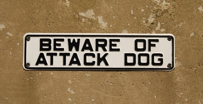 Political Attack Dogs