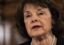 Democrat Senatrix Scrambles To Protect Deep State